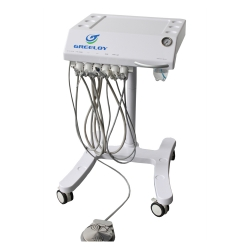 Greeloy Mobile Dental Unit Indoor Operation Unit for Oral Health and Treatment GU-P301