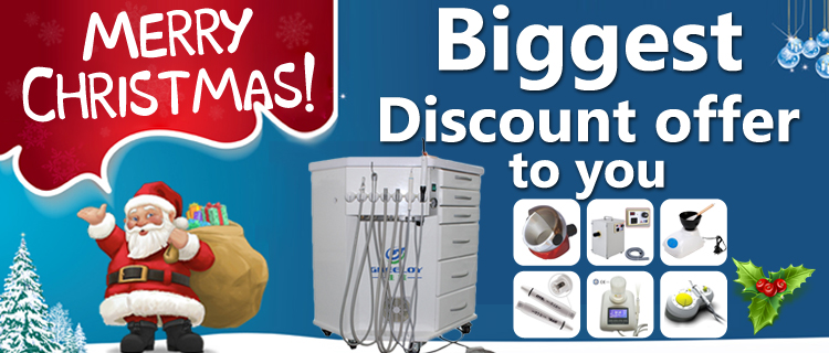 Merry Christmas! Biggest Discount offer to you